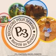 P3 logo 1